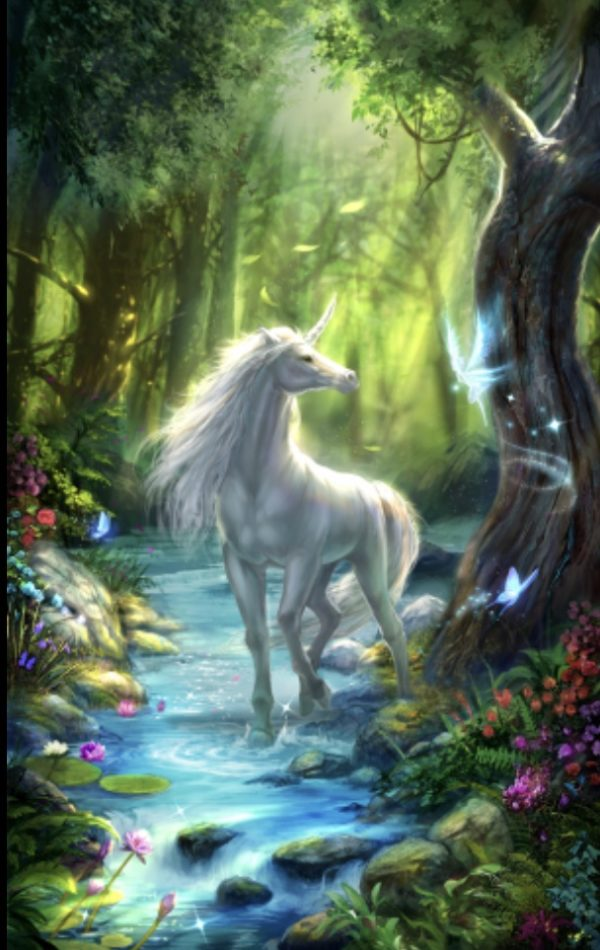 The Unicorns Forest 1
