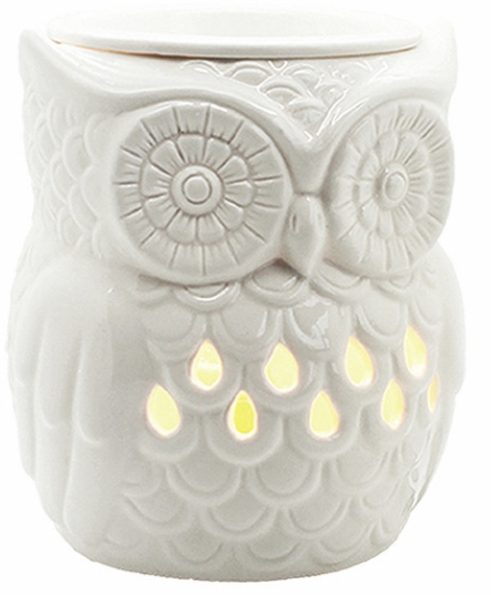 Owl Electric Warmer 1