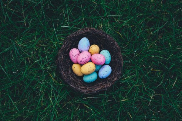 Speckled Eggs 1